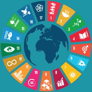link to UN SDGS site