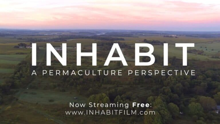 Inhabit film poster